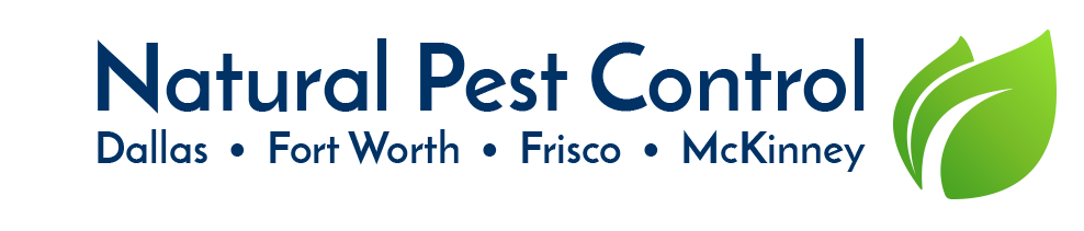 Natural Pest Control Dallas, Fort Worth, Frisco and Mckinney